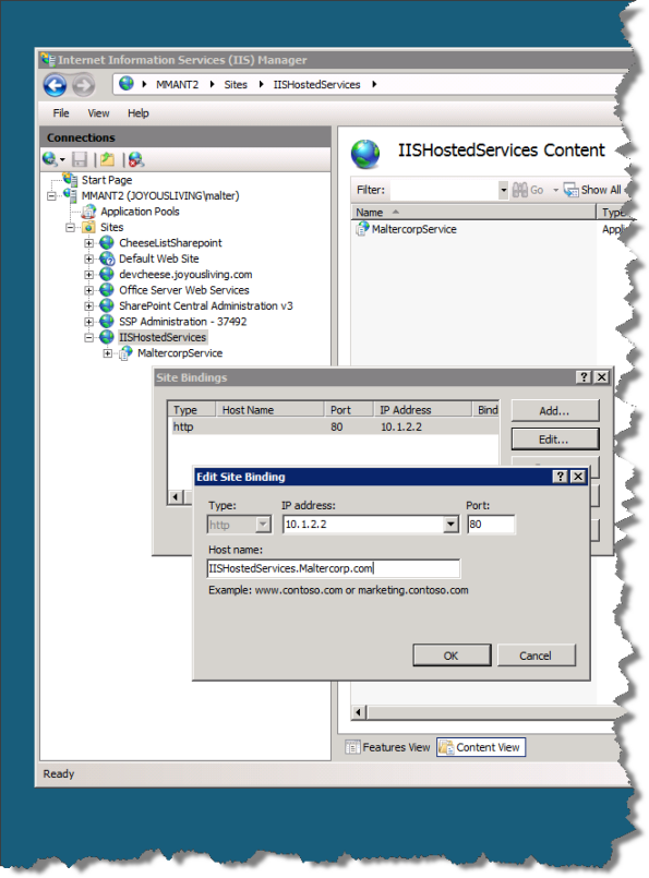 Edit Binding in IIS UI